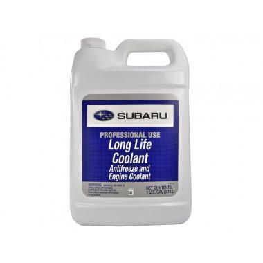 Концентрат антифриза Subaru Long life coolant 3,78 литра.